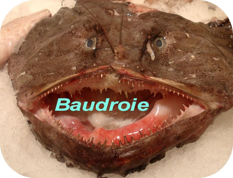 http://dico-cuisine.fr/images/Baudroie_DC_t.800.jpg