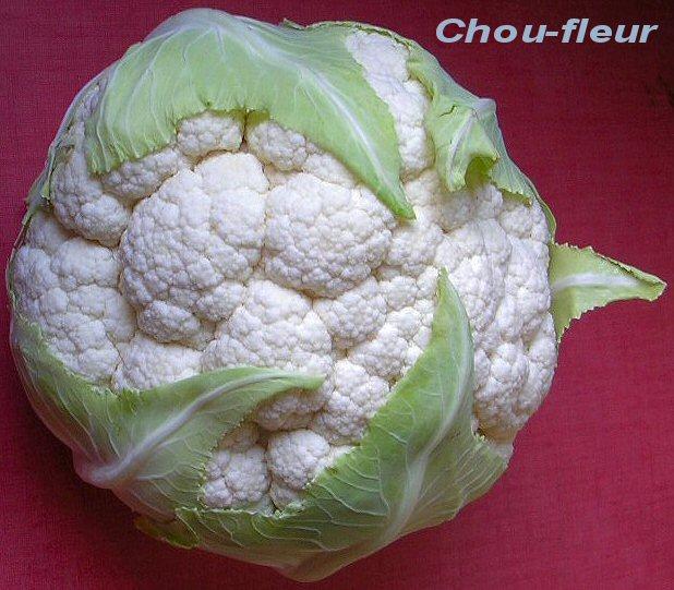 dictionnaire de cuisine et gastronomie - chou-fleur