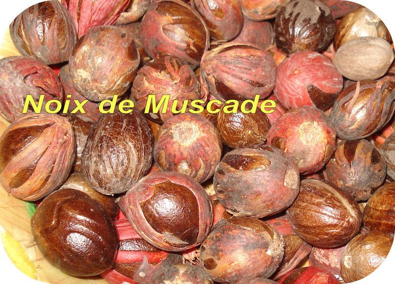 Dictionnaire de cuisine et gastronomie muscade noix de for Noix de muscade cuisine