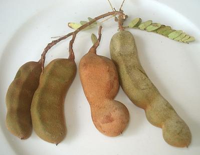 legume commencant par n. carottes with legume commencant par n
